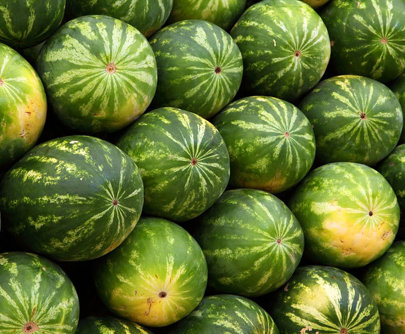 VegNews.Watermelon