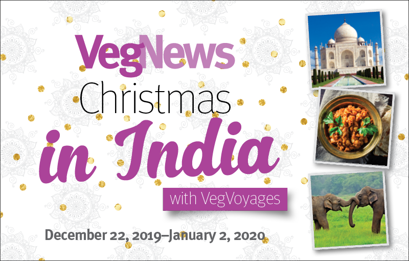 VegNewsVacations2019.India.800x510.NOTEXT