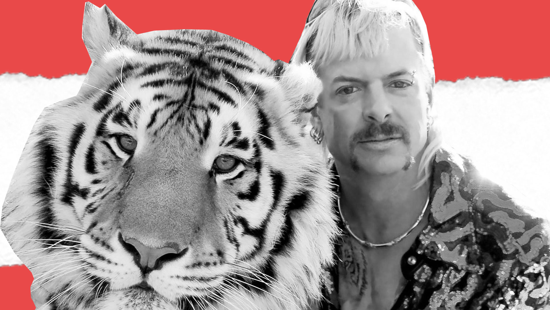 VegNews.TigerKingGraphic