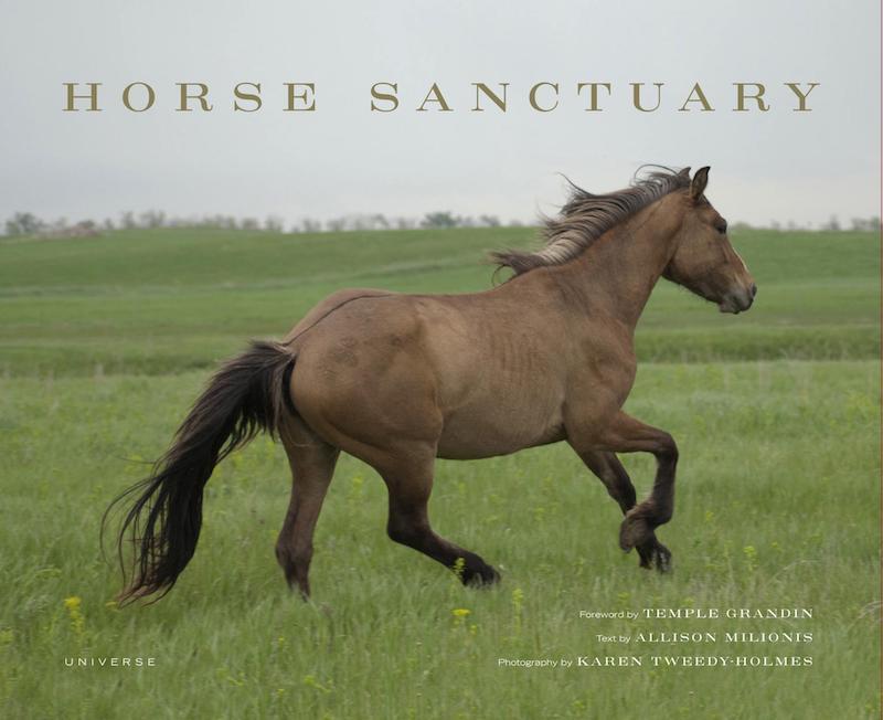 VegNews.HorseSanctuary