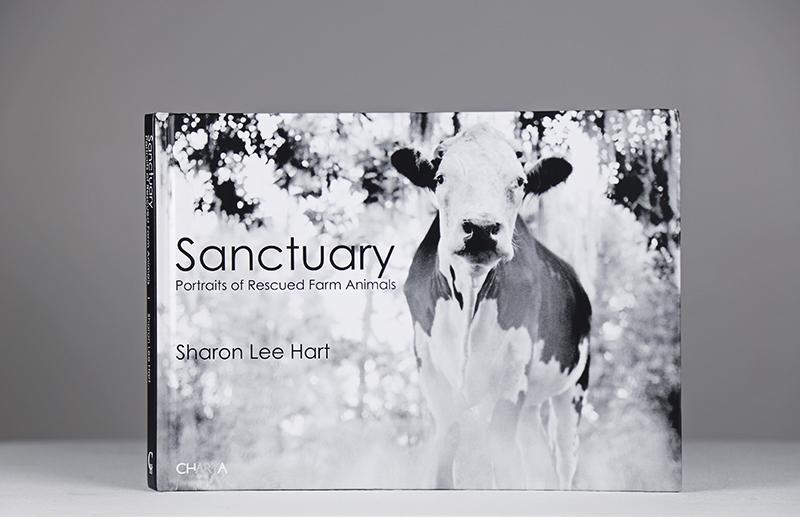 VegNews.Sanctuary