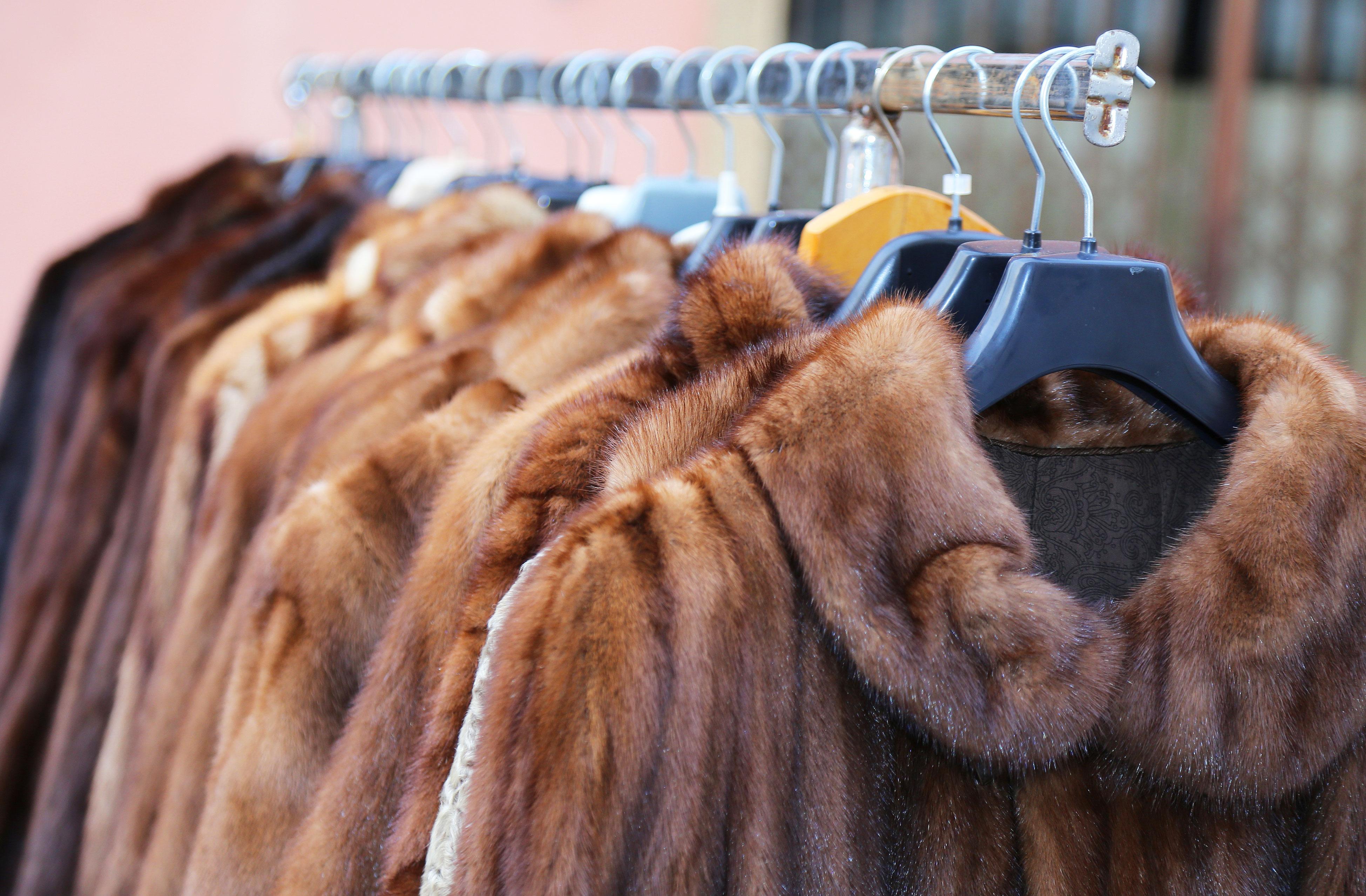 VegNews.Furs