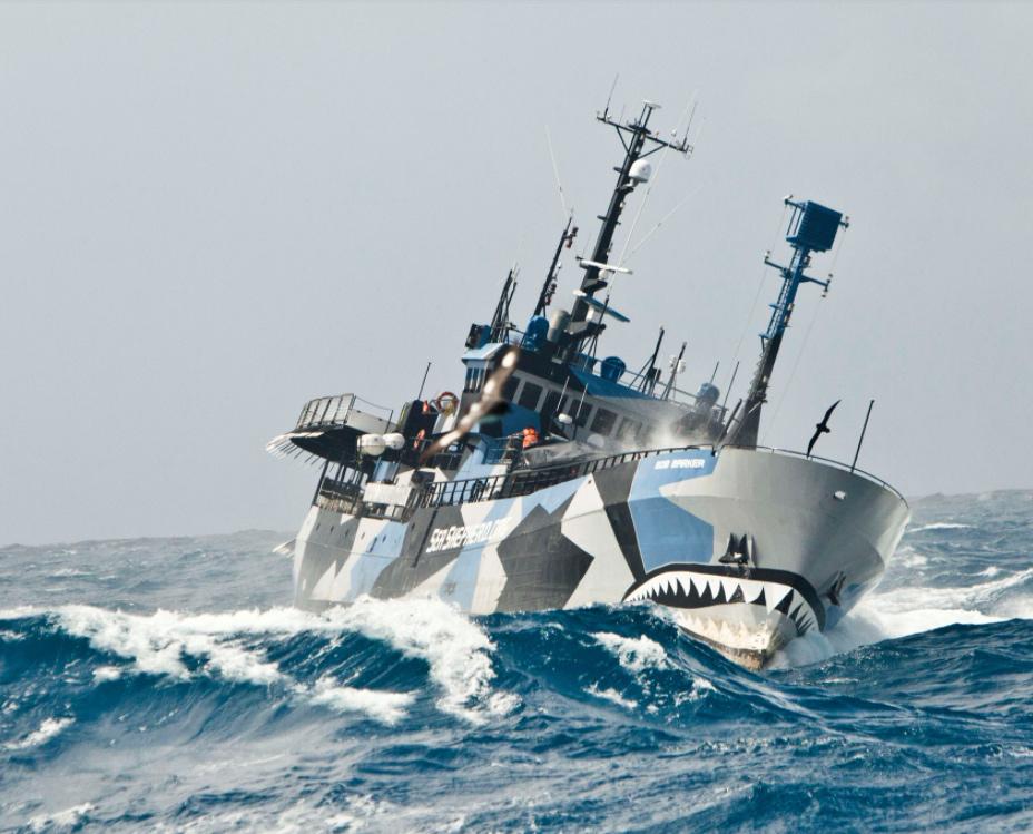 VegNews.SeaShepherd3