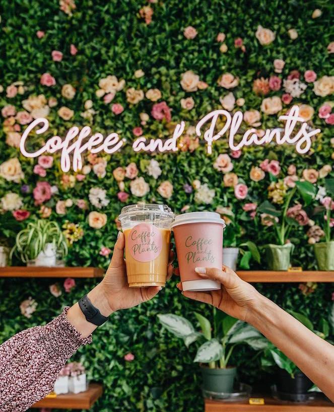 VegNews.CoffeePlants