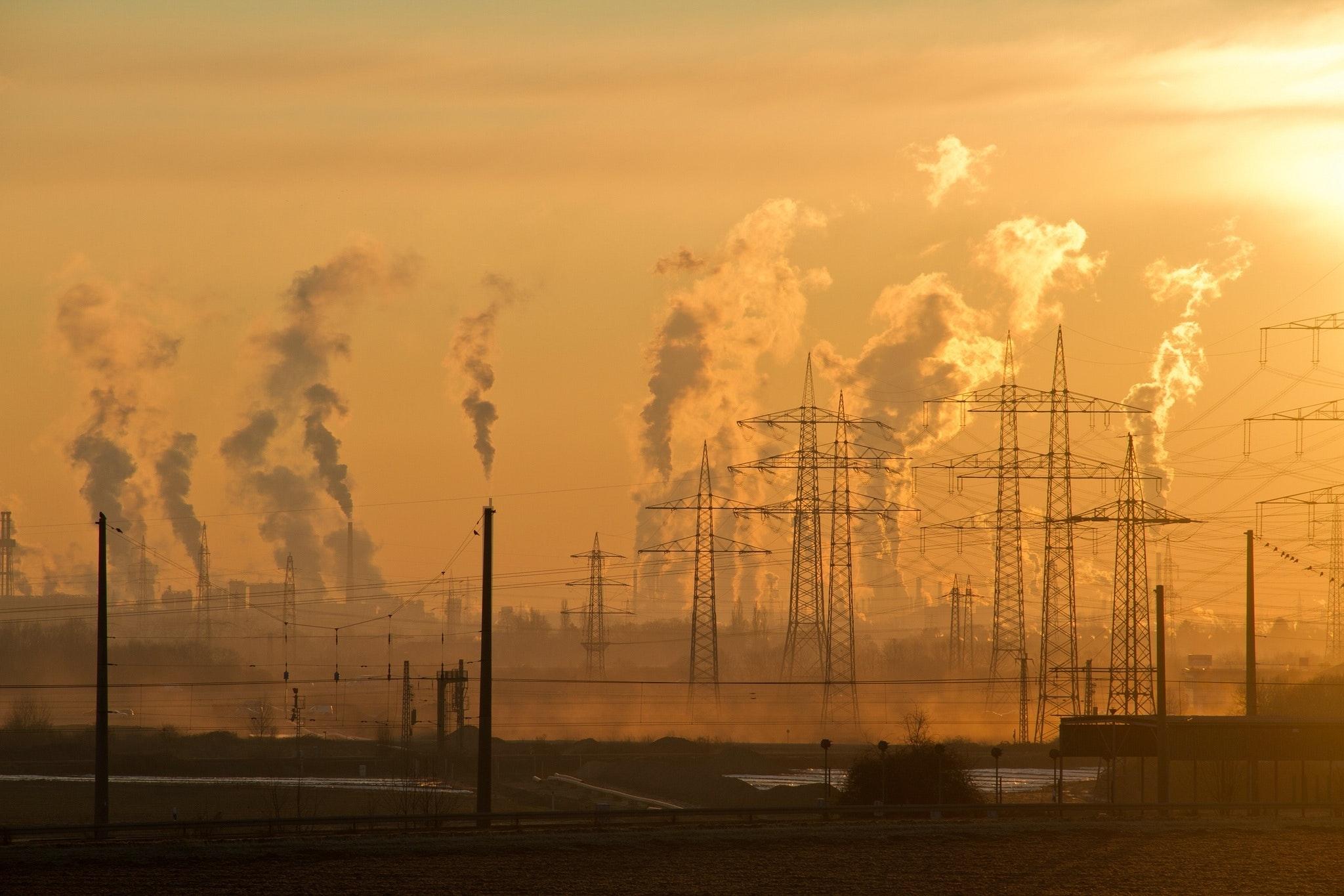 VegNews.ClimateChange2