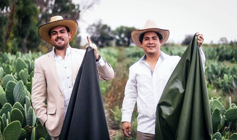 Two Guys in Mexico Just Created Vegan Leather From Cactus