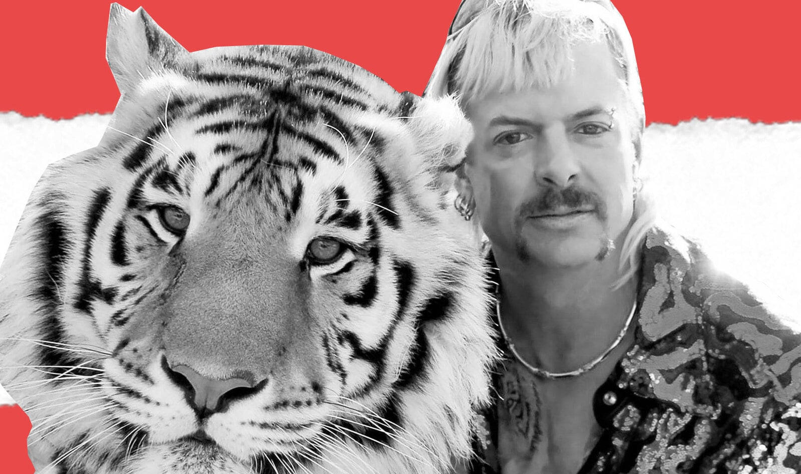 New Undercover Footage Shows <i>Tiger King</i> Stars Brutally Abusing Animals&nbsp;