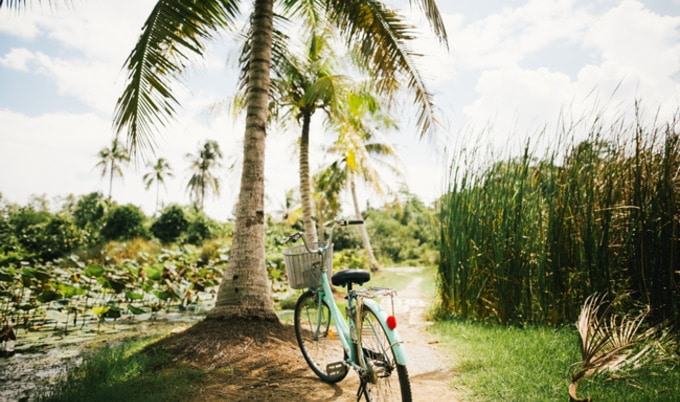VegNews.VacationBike
