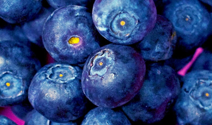 VegNews.Blueberries1