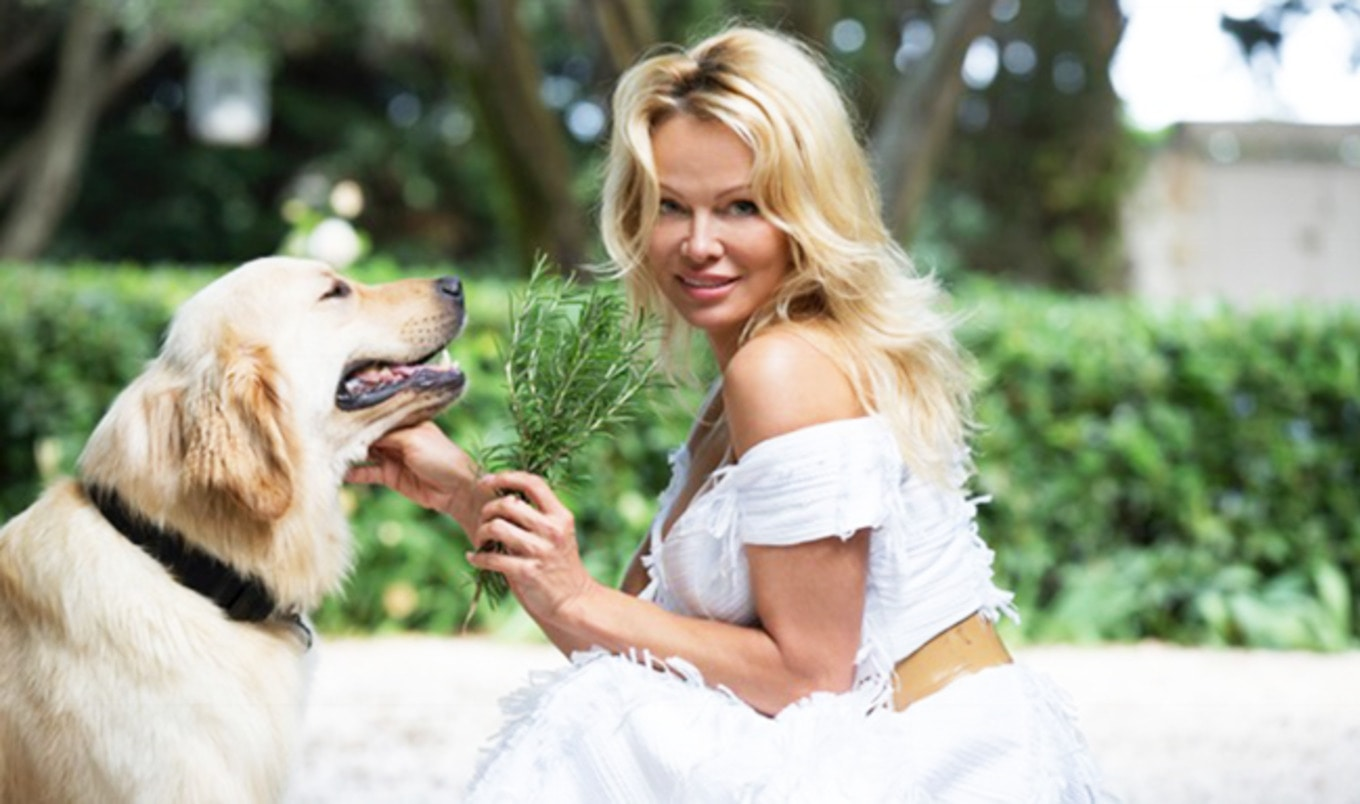 Pamela Anderson to Open Vegan Eatery in France