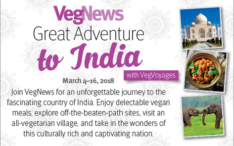 VegNewsVacations2018.India.586x374