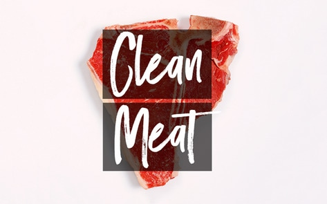 VegNews.CleanMeat2