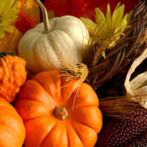 4 Tips for the Perfect Vegan Thanksgiving