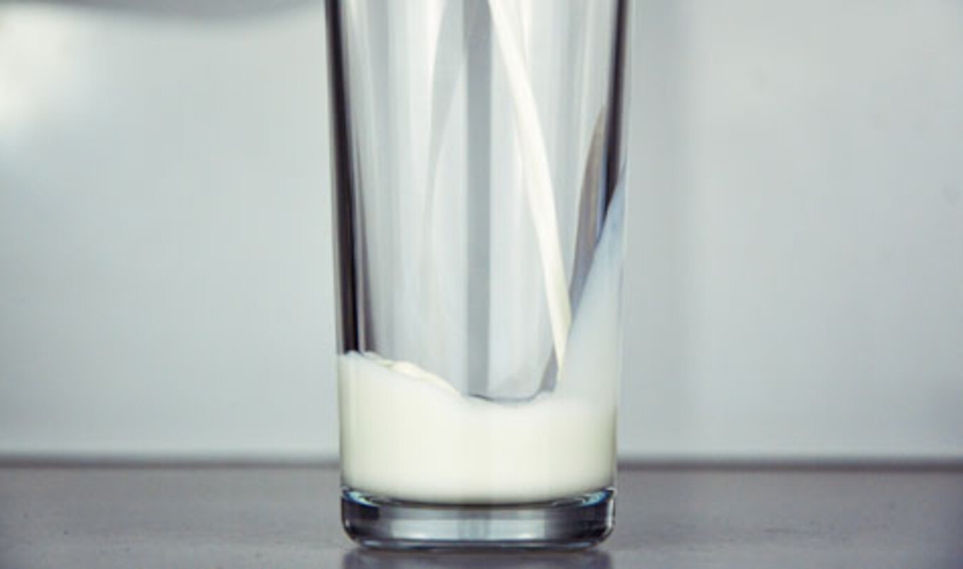 Cow-Free Milk Wins First Place Sustainability Award