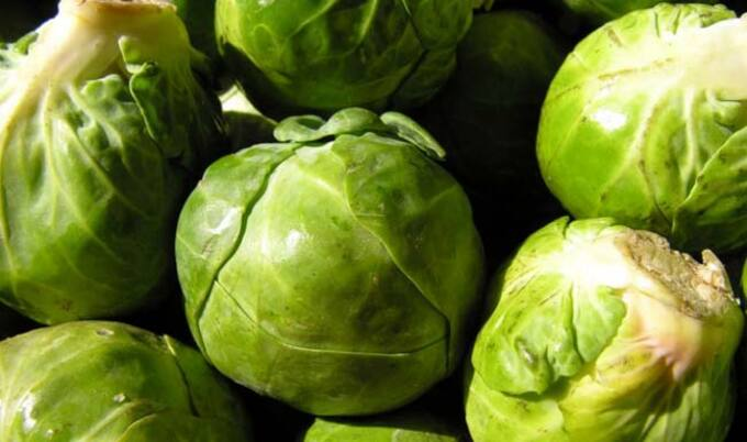VegNews.Sprouts