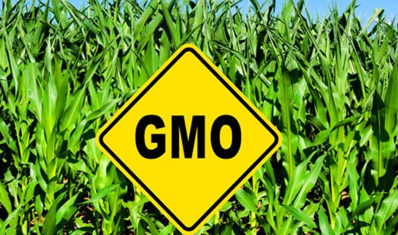"GMO ""DARK Act"" Bill Rejected by Senate"