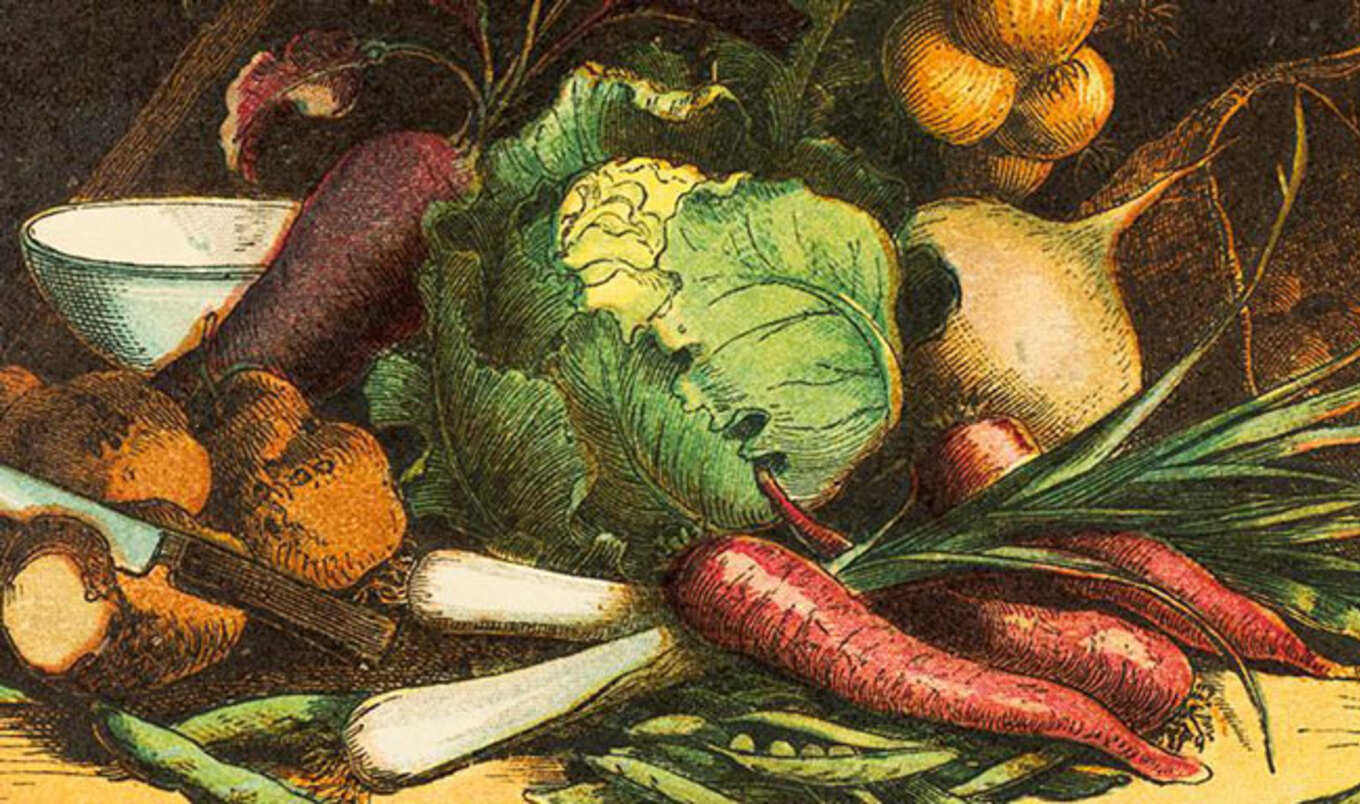Indiana University Hosts Display on Vegetarian History