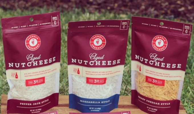 Image result for nut cheese