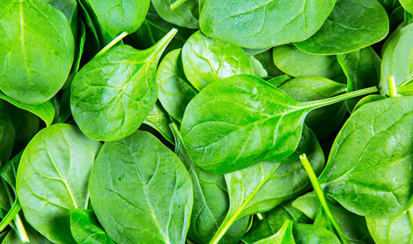 Scientists Grow Beating Heart Tissue on Spinach