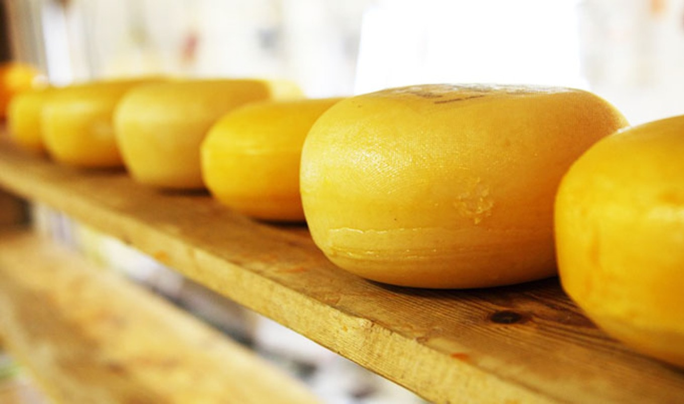 Cheese is Healthy, Says the Dairy Industry
