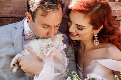 Mark mccabe wedding