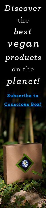 VNLT.ConsciousBox.9.12