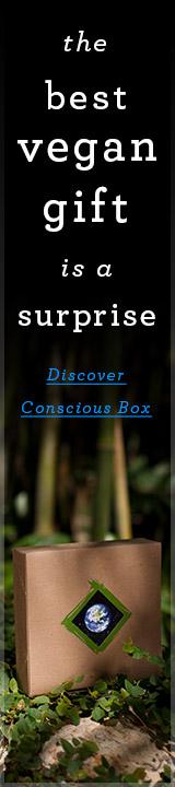 VNLT.ConsciousBox.11.12