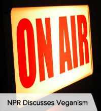 NPR Discusses Veganism