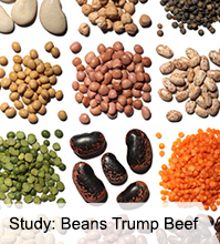 VegNews.OctoberNewsletter.Beans.png