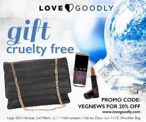 LoveGoodly.VNL.300x250.12.2015.png