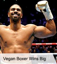 VegNews.VeganBoxer