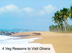 VegNews.Ghana