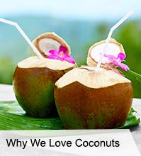 VegNews.Coconuts