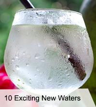 VegNews.Water