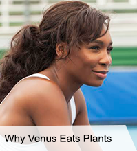 VegNews.Venus