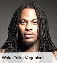 VegNews.Waka