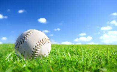 Peta Names Top 10 Veg Friendly Baseball Parks
